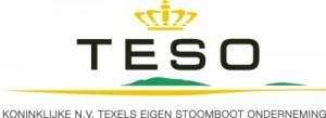 TESO_1_2_logo